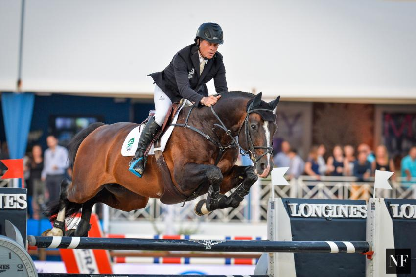 paard-CasallAsk